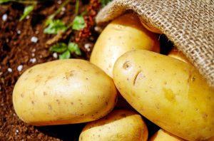 Kartoffeln 1800x1125px | Kartoffel Winte