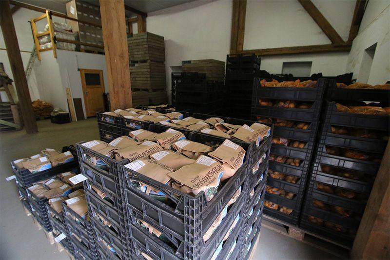 Kartoffelabfüllung in Kisten 800x533px | Kartoffel Winte