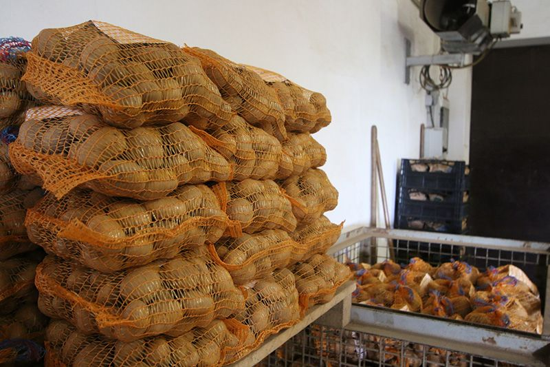 Kartoffelsäcke 800x533px | Kartoffel Winte